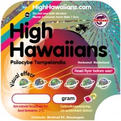 在线订购高级夏威夷人