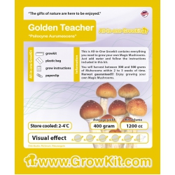 Paddo-Growkit-Golden-teacher-1200-cc