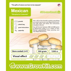 Paddo-Growkit-Mexican-1200-cc