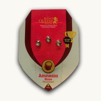 Amnesia-haze-wietzaden