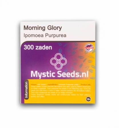 morning glory trip zaden