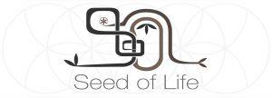 Seed of Life Psyshirt
