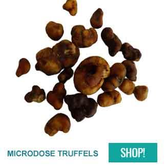 microdosing truffels kopen